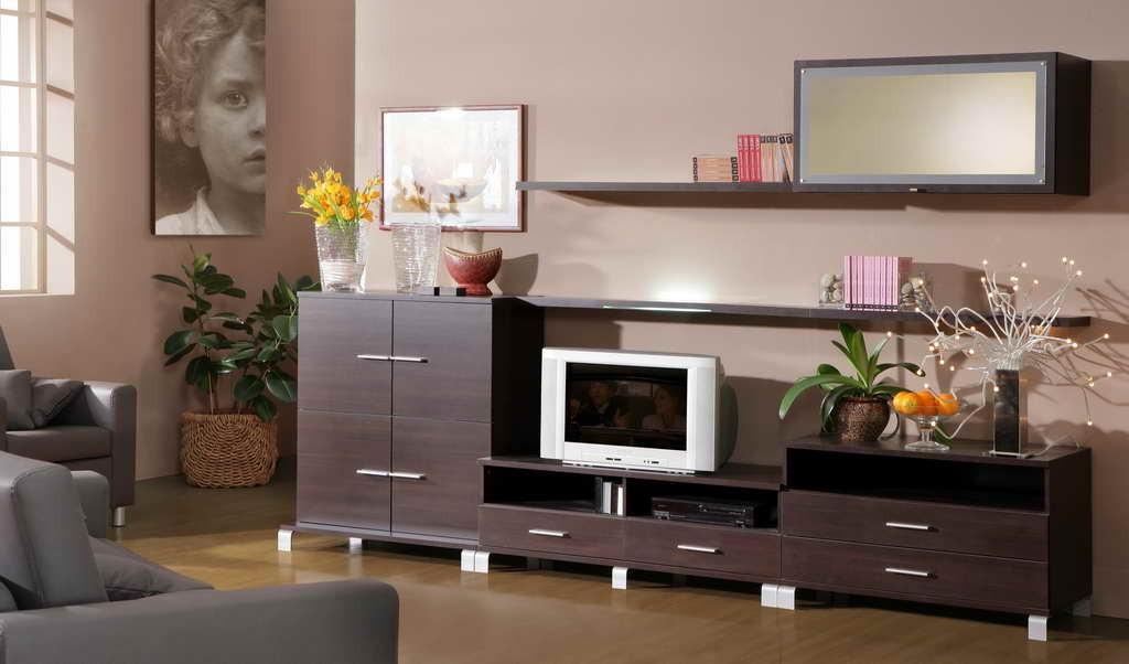 Мебель для гостинной, корпусная мебель на заказ в оренбурге..